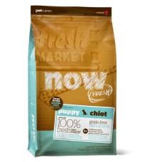 NOW Fresh Puppy Large Breed Recipe Grain Free для Щенков Крупных пород с Индейкой, Уткой и овощами