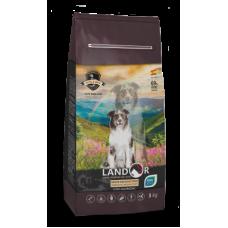 LANDOR DOG SENIOR&ADULT - Полнорационный сухой корм для пожилых и взрослых собак всех пород с функцией улучшения мозговой деятельности